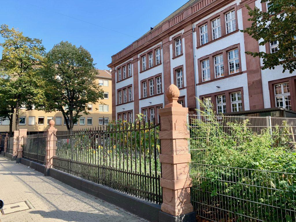 Schulgarten Herbst